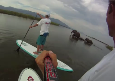 Connor Baxter in Africa – Paddling the Zambezi River