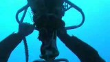 The Ultimate Dive. The deepest dive in history: -209.6 m