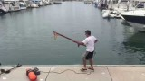 Tuna speared from dock in harbor