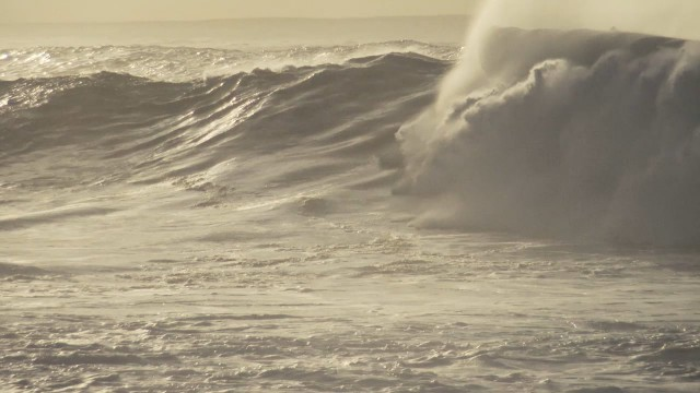 Friday, Jan 15 at Waimea Bay