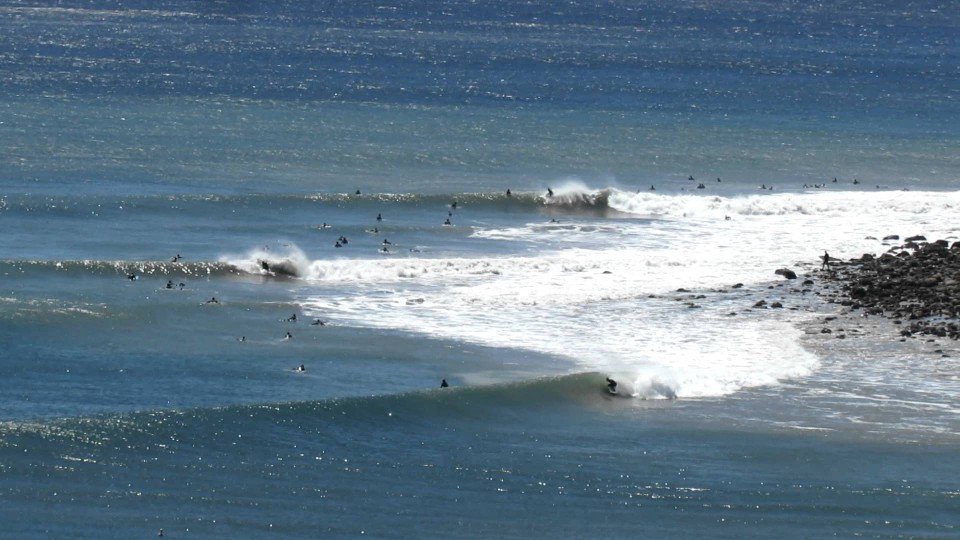 Surfing The Californian Cape St Francis