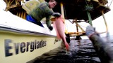 The Great Gulf of Mexico 2015 Spearfishing