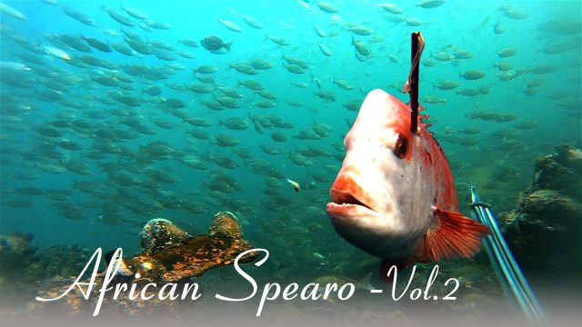 African Spearo (Vol.2) : Struisbaai Madness_Ep.1