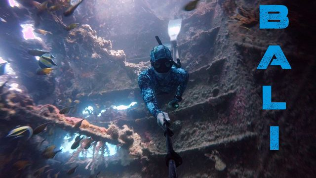 Bali   Freediving Experience