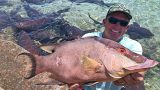 Cave Diving, Hogfish, Grouper, Dolphin, spearfishing (Staniel Cay) Exhumas, The Bahamas