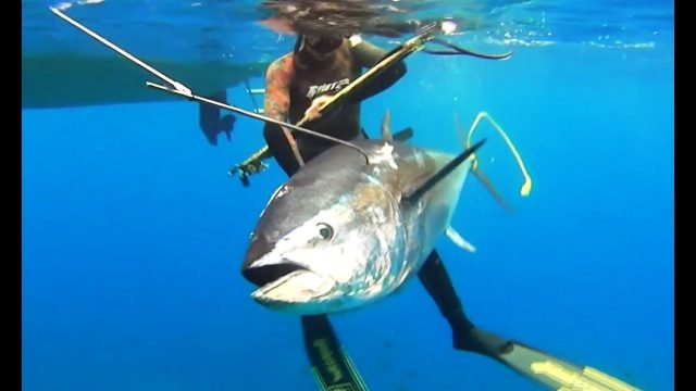 Extreme Tuna Spearfishing in the Aegean Sea – Blue water hunting technics Dimos Adamis